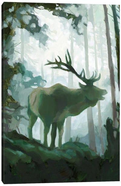 Elemental Animals II Canvas Art Print