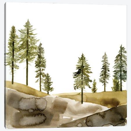Pine Hill I Canvas Print #JCG86} by Jacob Green Canvas Wall Art