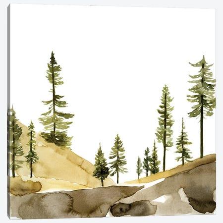 Pine Hill II Canvas Print #JCG87} by Jacob Green Canvas Artwork