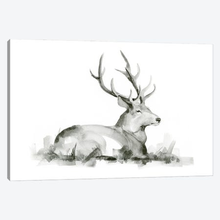 Recumbent Stag I Canvas Print #JCG94} by Jacob Green Canvas Art Print