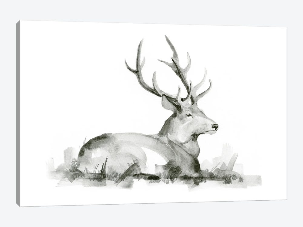 Recumbent Stag I by Jacob Green 1-piece Canvas Art Print
