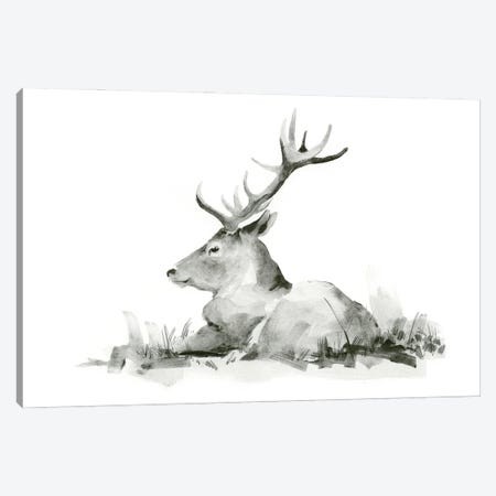 Recumbent Stag II Canvas Print #JCG95} by Jacob Green Canvas Art Print