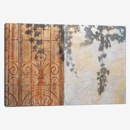 Rusty Door And Grapevine Canvas Print #JCI1} by Josep Cisquella Canvas Art Print