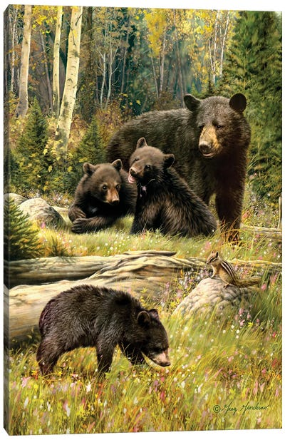 Black Bear Family Canvas Art Print