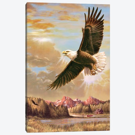 Up On High- Eagle Canvas Print #JCL2} by Greg & Company Canvas Wall Art