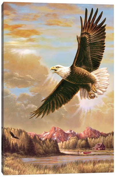 Up On High- Eagle Canvas Art Print