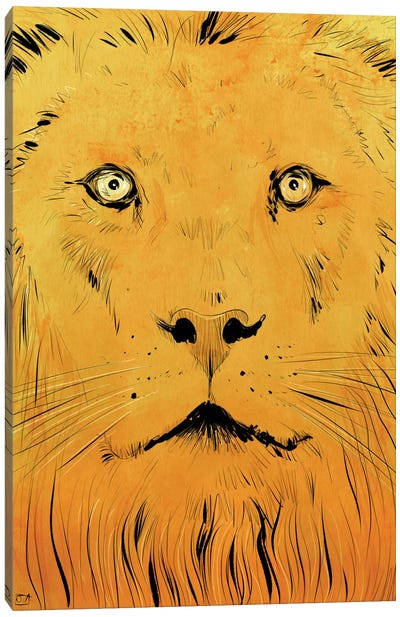 Lion Canvas Print #JCR40