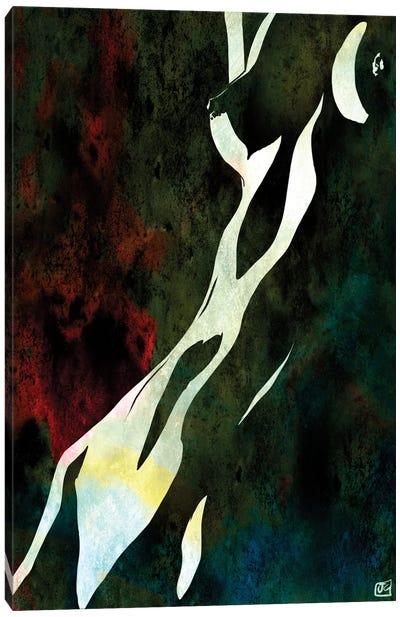 Nude IX Canvas Art Print