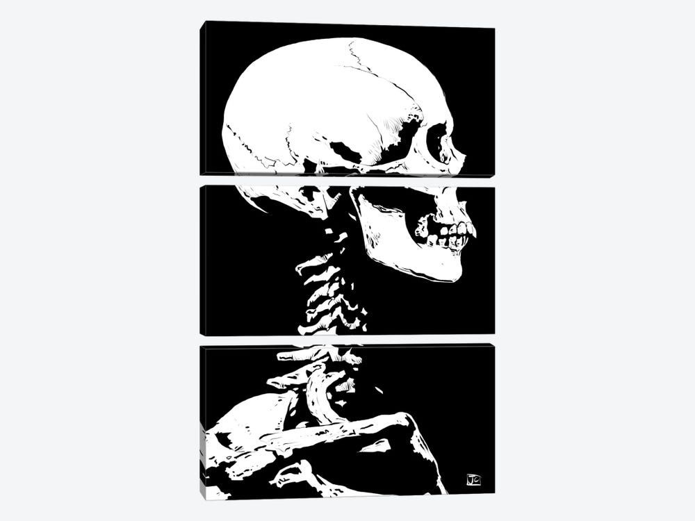 Skeleton by Giuseppe Cristiano 3-piece Canvas Art