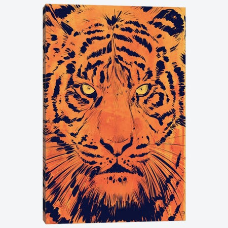 Tiger Canvas Print #JCR74} by Giuseppe Cristiano Canvas Artwork
