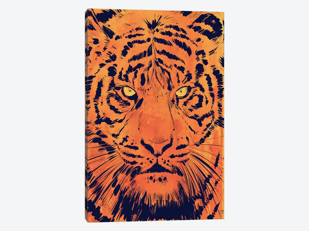 Tiger by Giuseppe Cristiano 1-piece Canvas Wall Art