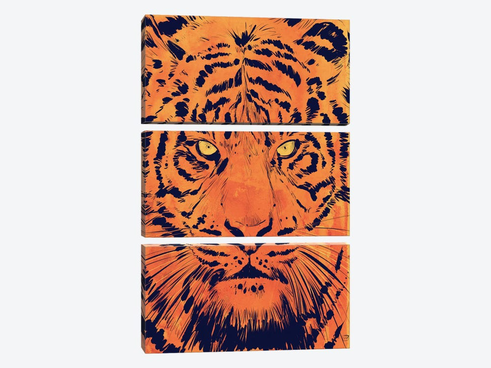 Tiger by Giuseppe Cristiano 3-piece Canvas Wall Art