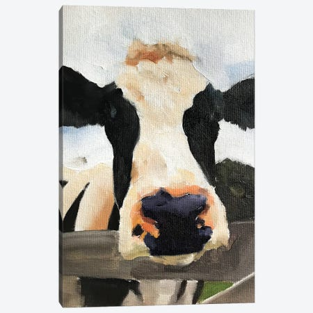 Posing Cow Canvas Print #JCT104} by James Coates Art Print