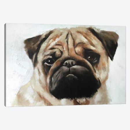 Pug Dog Canvas Print #JCT106} by James Coates Canvas Print