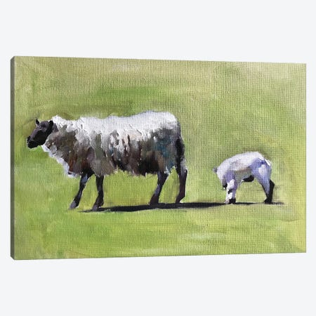Sheep And Lamb In A Field Canvas Print #JCT115} by James Coates Canvas Wall Art