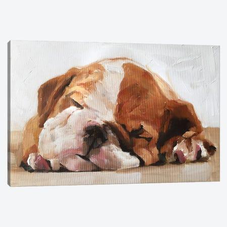 Sleepy Puppy Canvas Print #JCT120} by James Coates Canvas Wall Art