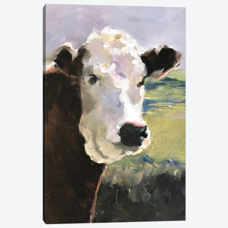 White Faced Cow Canvas Print #JCT137} by James Coates Canvas Art