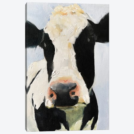 Black And White Cow Canvas Print #JCT18} by James Coates Art Print