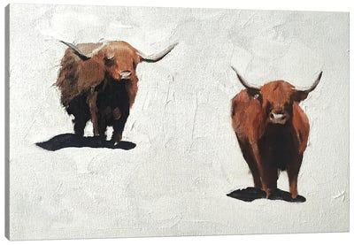 Two Brown Cows Canvas Art Print