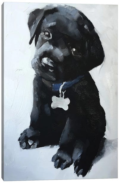 Black Labrador Puppy Canvas Art Print
