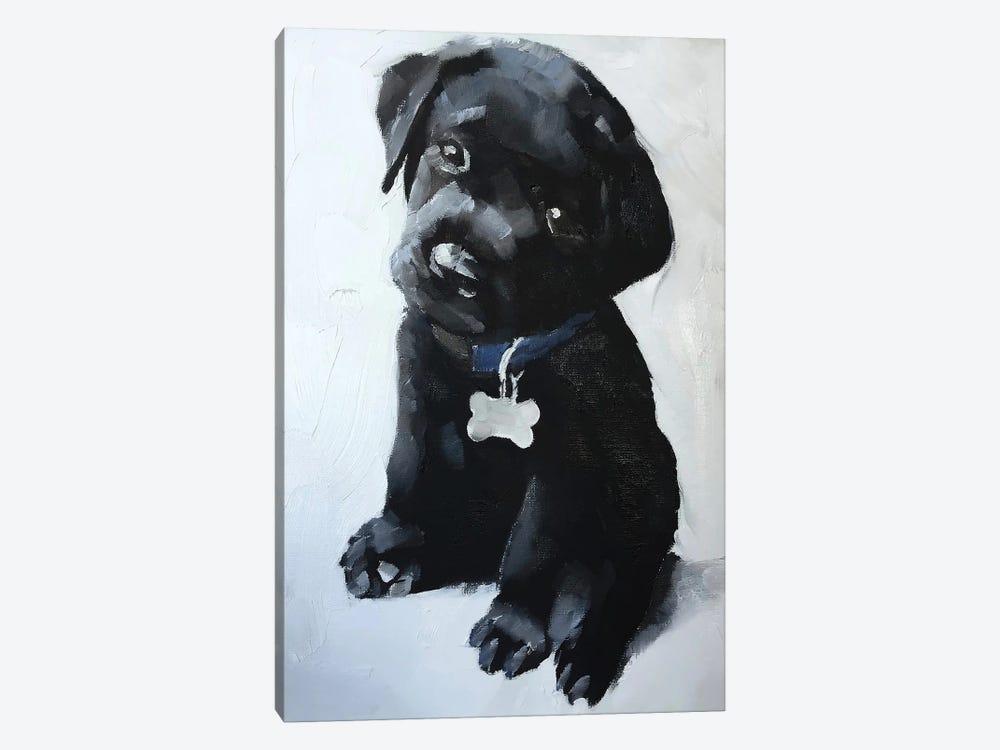 Black Labrador Puppy by James Coates 1-piece Canvas Artwork