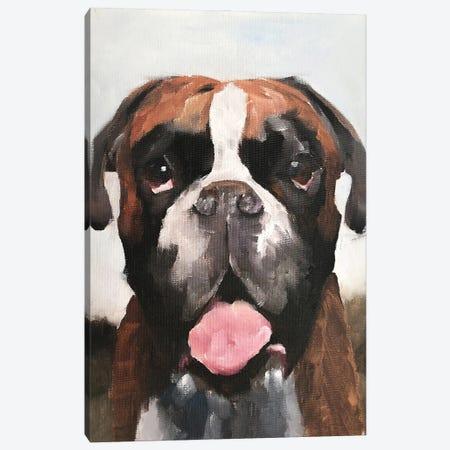 Boxer Dog Canvas Print #JCT24} by James Coates Canvas Art Print