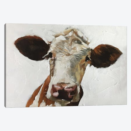White And Brown Cow Canvas Print #JCT27} by James Coates Canvas Print