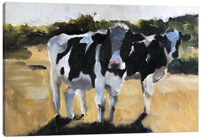 Two Cows In A Field Canvas Art Print