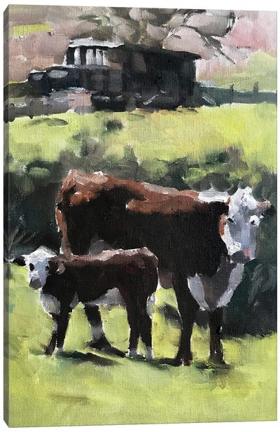 Cow And Calf Canvas Art Print