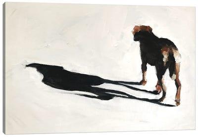 Dog And Shadow Canvas Art Print