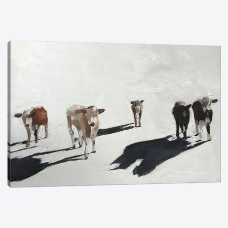 Five Cows Canvas Print #JCT57} by James Coates Canvas Artwork