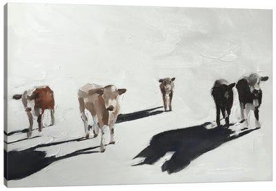 Five Cows Canvas Art Print