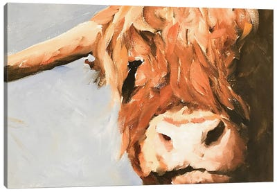 Grumpy Cow Canvas Art Print