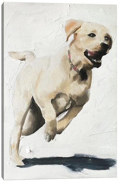 Happy Labrador Canvas Art Print