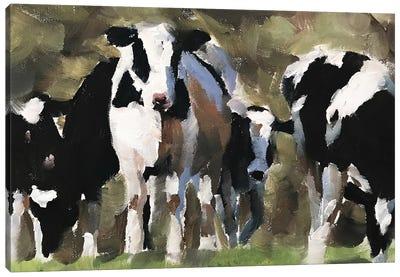 Heard Of Cows Canvas Art Print