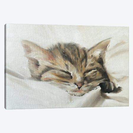 Kitten Canvas Print #JCT84} by James Coates Canvas Print