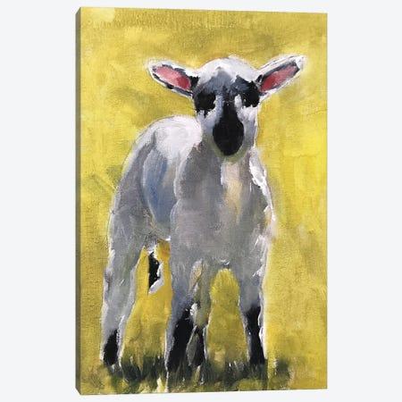 Little Lamb Canvas Print #JCT88} by James Coates Canvas Art
