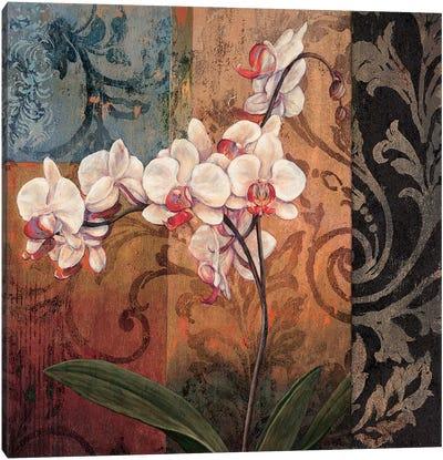 Opulent I Canvas Art Print