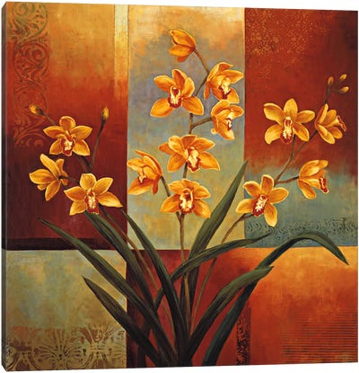 Orange Orchid Canvas Print #JDE13