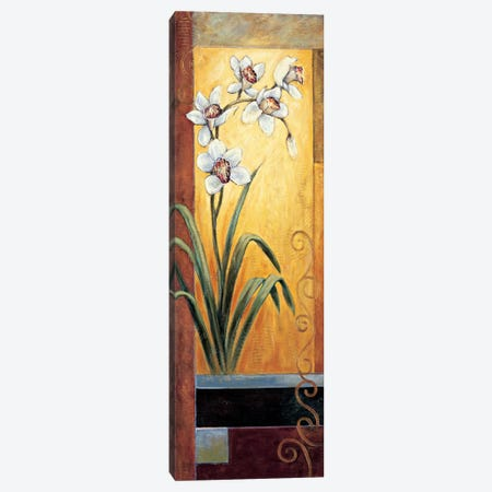 Orchid Canvas Print #JDE14} by Jill Deveraux Canvas Artwork
