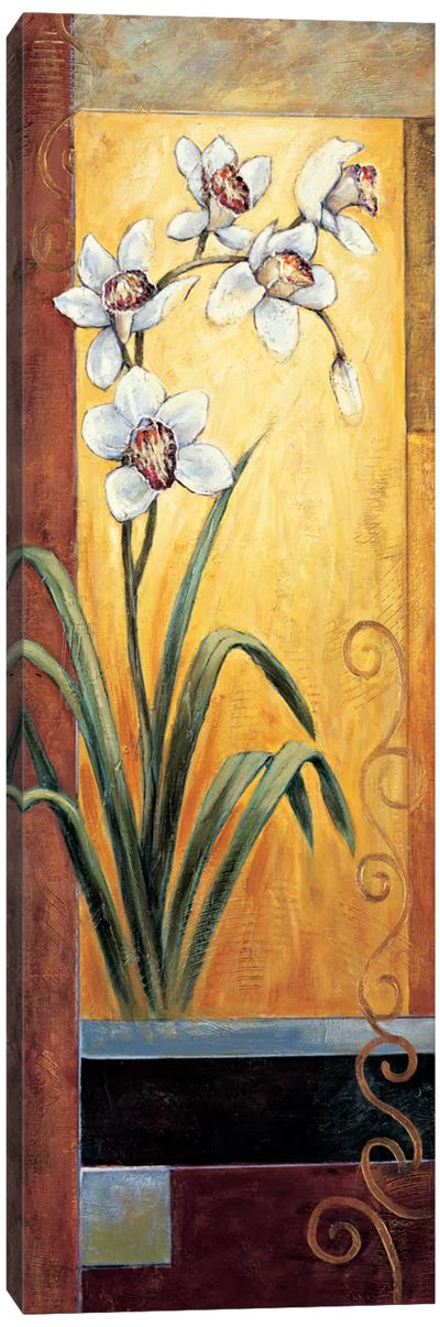 Orchid Canvas Art Print