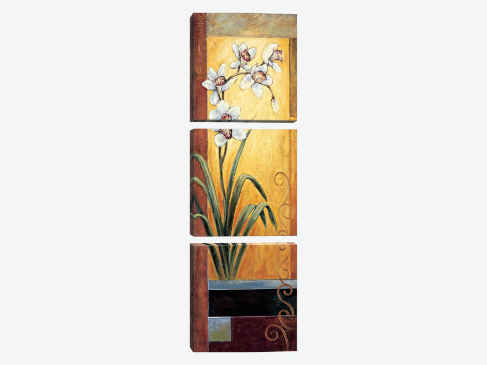 Orchid by Jill Deveraux 3-piece Canvas Artwork