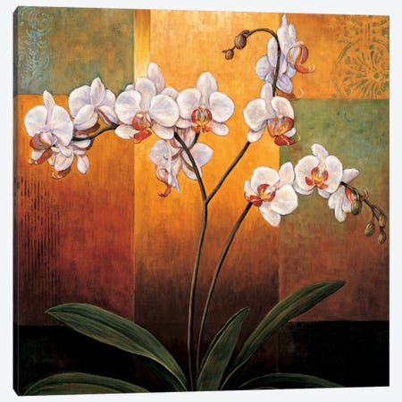 Orchids Canvas Print #JDE16} by Jill Deveraux Canvas Artwork