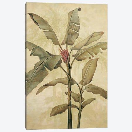 Palms Of The Tropics I Canvas Print #JDE17} by Jill Deveraux Canvas Art