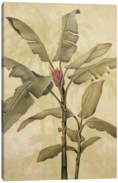 Palms Of The Tropics I Canvas Art Print