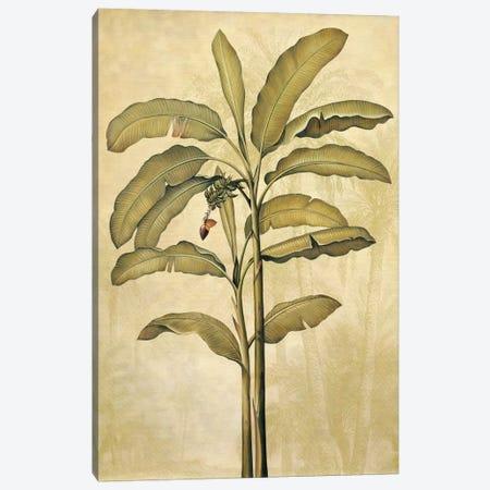 Palms Of The Tropics II Canvas Print #JDE18} by Jill Deveraux Canvas Art Print