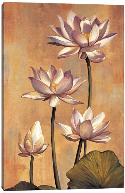 White Lotus Canvas Art Print