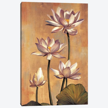 White Lotus Canvas Print #JDE19} by Jill Deveraux Canvas Art Print