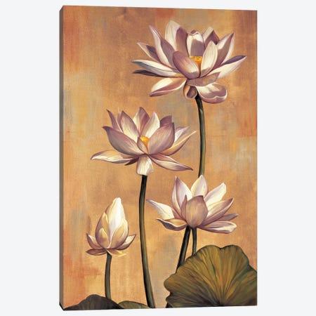 White Lotus Canvas Print #JDE19} by Jill Deveraux Canvas Art Print