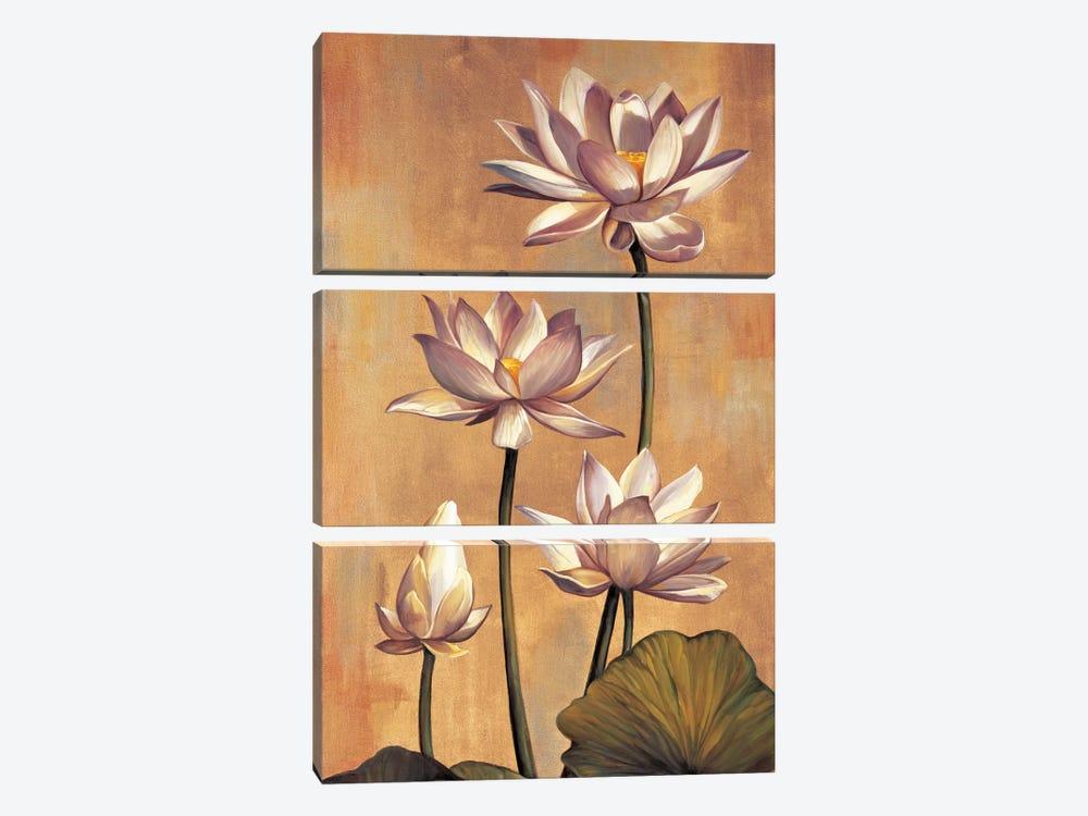 White Lotus by Jill Deveraux 3-piece Canvas Print